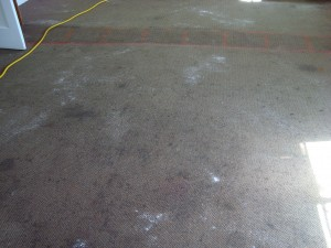 Before cleaning with CitruSolution