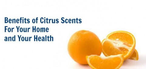 Benefits of Citrus Scents For Your Home And Your Health