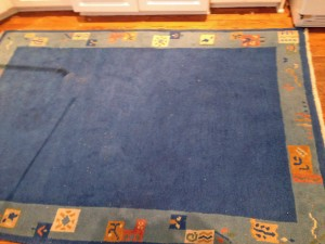 oriental rug before cleaning