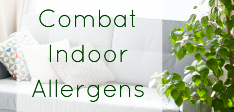 How to Combat Indoor Allergens Naturally